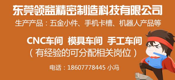 东莞领益精密制造科技有限公司